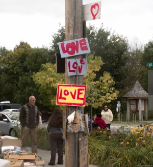 love sign poll