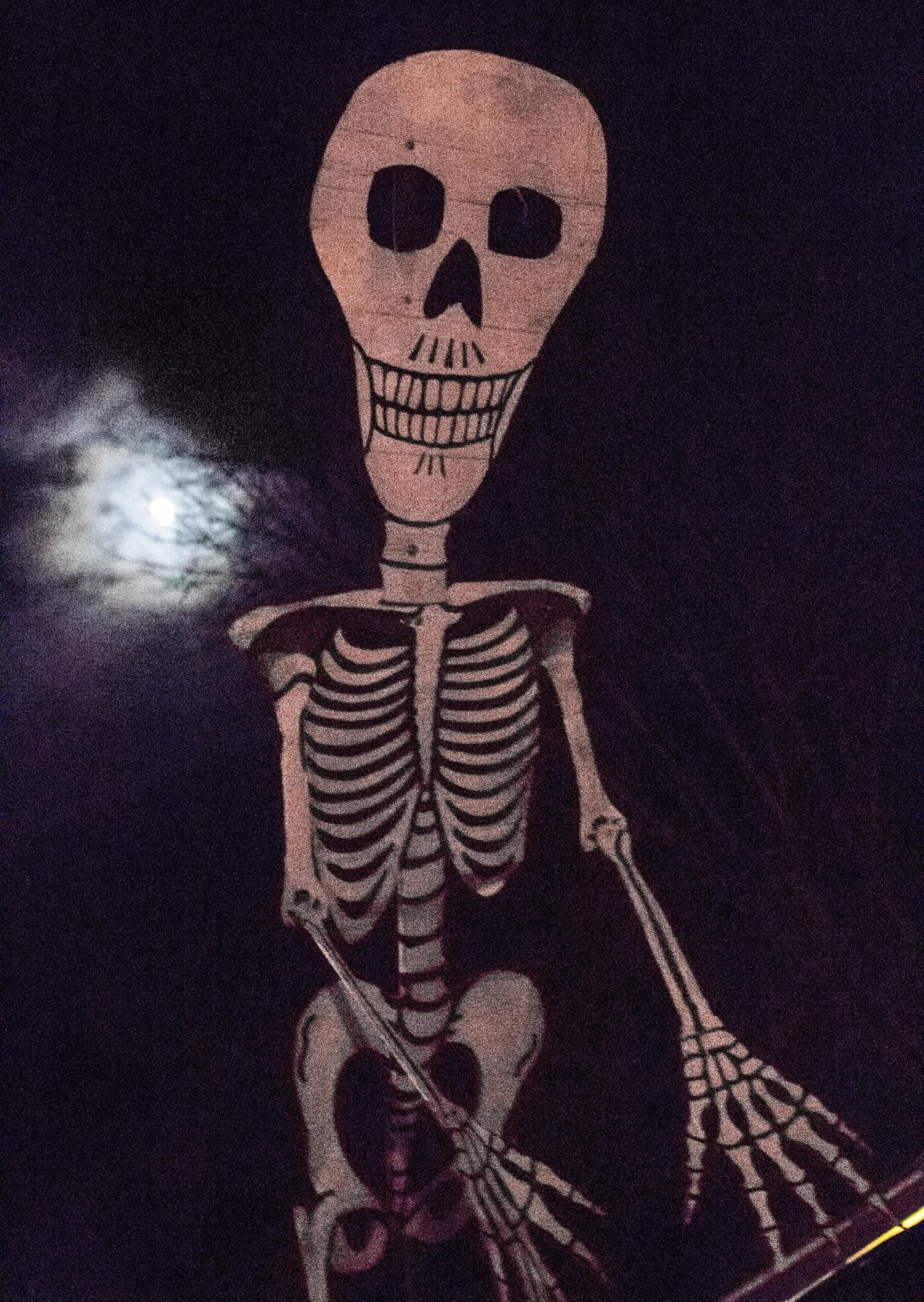 skeleton and moon