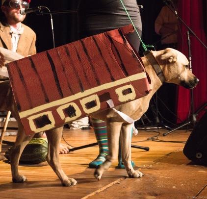 zhouse dog