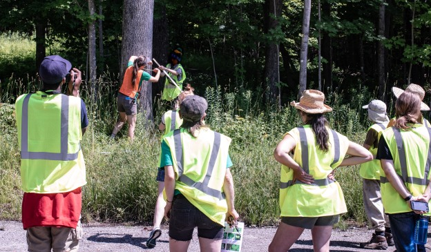 measuring tree group